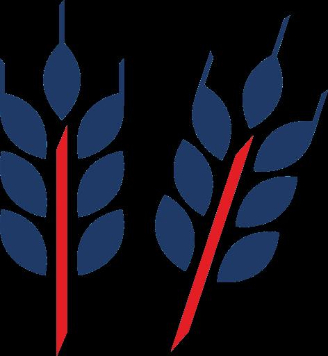 Опубликовать статью по сельскому хозяйству