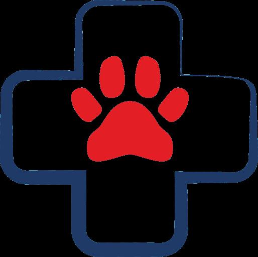 Опубликовать статью по ветеринарии